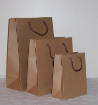 Onion Packing Bag